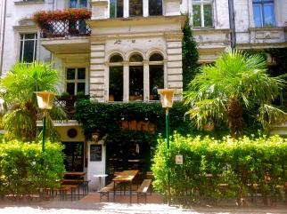 palmen in der flensburgerstrasse.